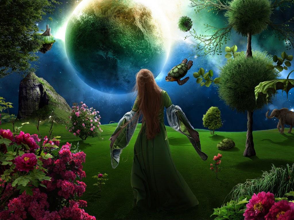 Le jardin int rieur for Jardin et la lune